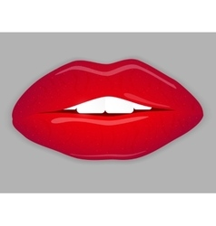 Open Mouth with red lips vector image vector image