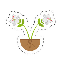 Daylily flower branch growing vector