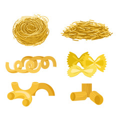 Different types of pasta whole wheat corn rice vector