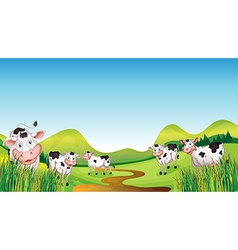 Group cows vector