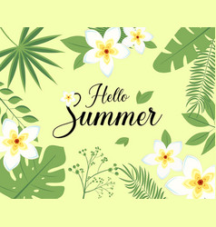 hello summer realistic leaf flower frangipani vector image