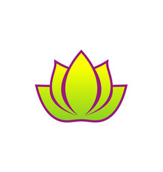 lotus flower spa beauty logo vector image