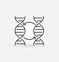two dna concept icon or symbol in thin line vector image
