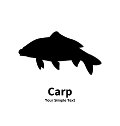 Isolated silhouette of carp fish vector image vector image