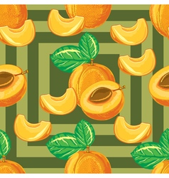 seamless pattern of ripe apricot vector image vector image