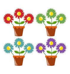 four flower pots with flowers vector image