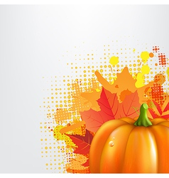 Grunge Background With Orange Pumpkin vector image