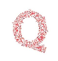 Romantic floral letter Q vector image