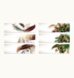 set of templates with realistic colorful feathers vector image