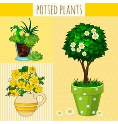 Three different flowers in pots vector image