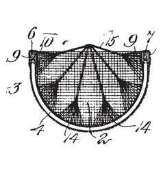 Tree hammocks vintage vector