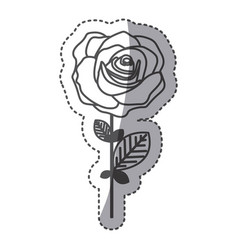 silhouette rose with oval petals and leaves icon vector image