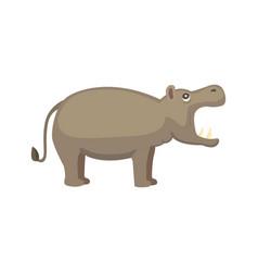 hippo cartoon style wild herbivorous vector image