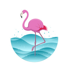pink flamingo on blue background vector image vector image