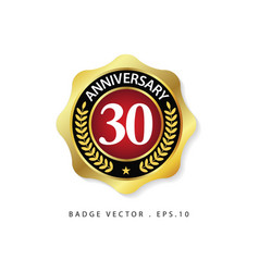 Anniversary 30 template design vector