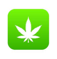 cannabis leaf icon digital green vector image