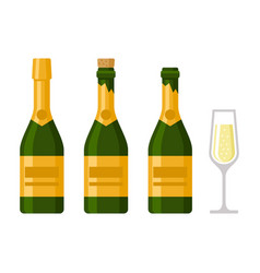 Champagne bottles set on white background vector