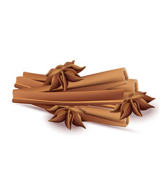 Cinnamon sticks and anise stars isolated on vector