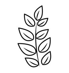 Contour plant branch decoration design vector