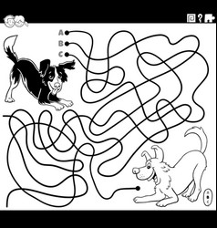 maze with playful dogs coloring book page vector image
