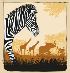 Wild africa card with zebra elephant and giraffes vector