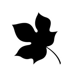 wutong leaf vector image