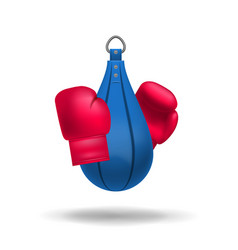 Realistic boxing gloves and punching bag vector
