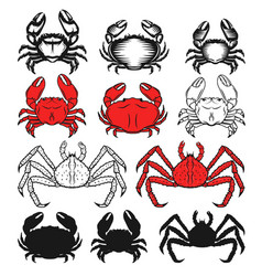 set of the crabs icons on white background vector image vector image