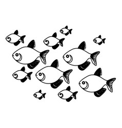 silhouette set collection fish aquatic animal vector image vector image