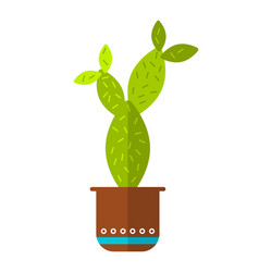 cactus succulent flat color icon vector image