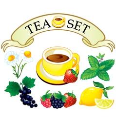 tea set aromatic plants vector image