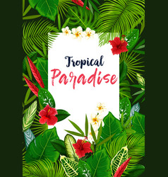 Exotic flowers and tropical leaves vector