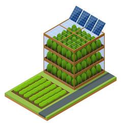 Isometric modern aeroponic hydroponics farm vector