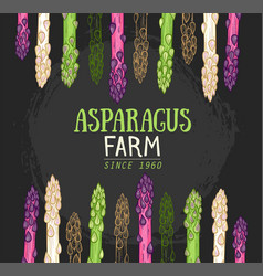 Organic asparagus farm hand drawn vector