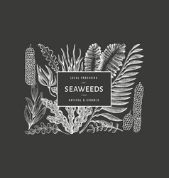 Seaweed design template hand drawn seaweeds vector