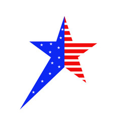 star ornament for 4 th july vector image