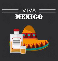 viva mexico hispanic event poster vector image vector image
