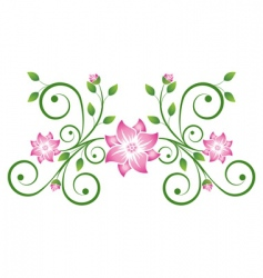 decorative scroll vector image vector image