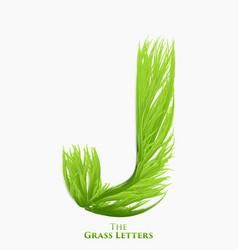 Letter j of juicy grass alphabet green j vector