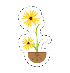 Marigold flower growing plant vector