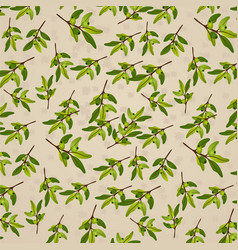 Seamless pattern olive on beige paper olive branch vector
