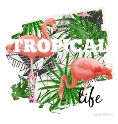 Tropical graphic with slogan in vector image