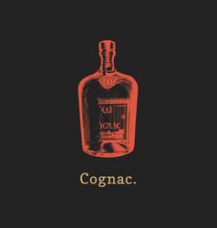 cognac bottle hand drawn vector image