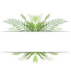 cover with leaves plants and herbs with space for vector image
