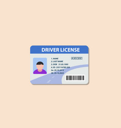 Driving license flat icon vector