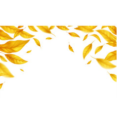 falling flying autumn leaves background realistic vector image