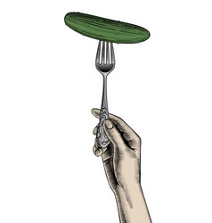 female hand holding a fork with a cucumber vector image