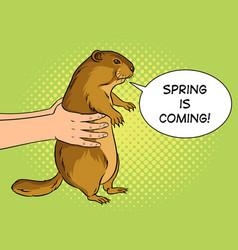 groundhog in hands pop art vector image