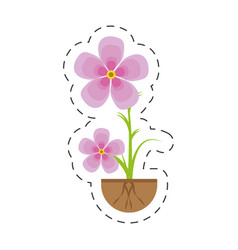 Magnolia flower flora growing vector