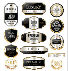 Premium and luxury silver retro badges and labels vector